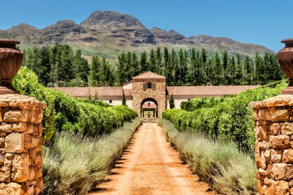 The Waterford Winery Estate in Stellenbosch South Africa